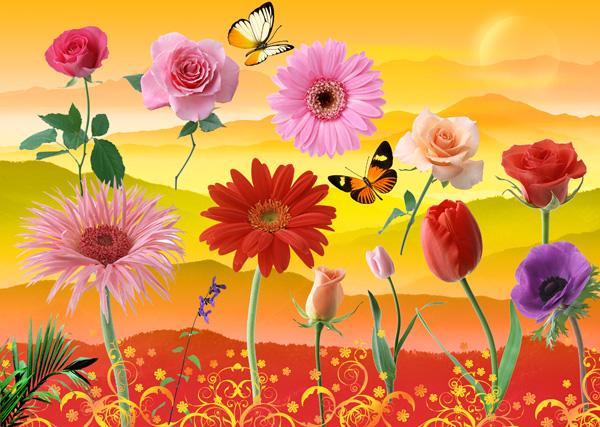 HD flowers flower butterflies source files PSD