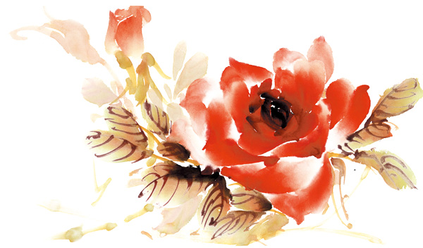 Roses watercolor style PSD