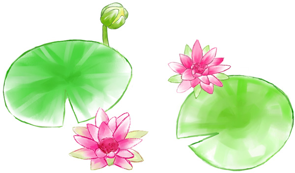 Lotus watercolor style  source files PSD