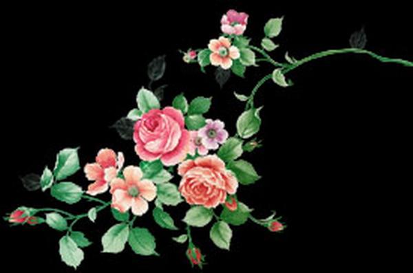 7 transparent flower designs  source files PSD