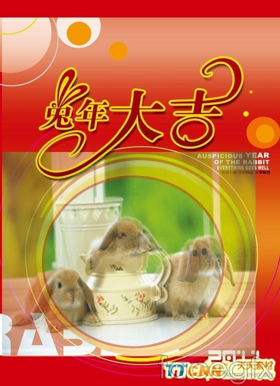 Rabbit 2011 Daji WordArt design PSD