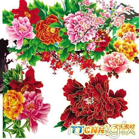Chinese traditional decorative flower patterns flowers were fresh PSD