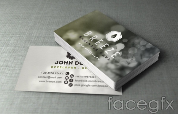 Card information design PSD