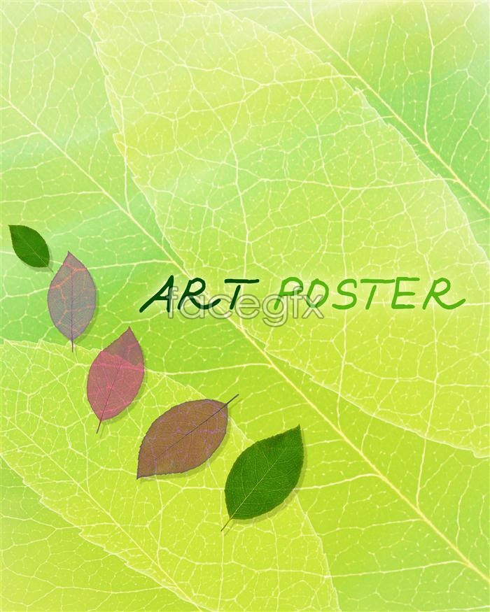 Fresh green poster background PSD