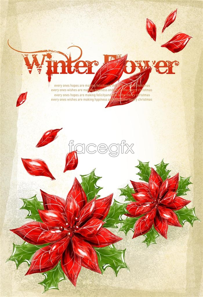 Christmas red flower  templates PSD