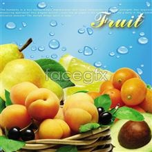 PSD  fruit 1