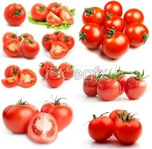 Tantalizing tomato PSD