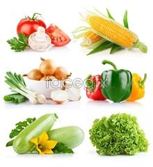 Tasty vegetables PSD
