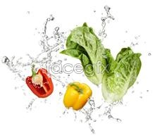 Fruits and vegetables, water drops splashing PSD