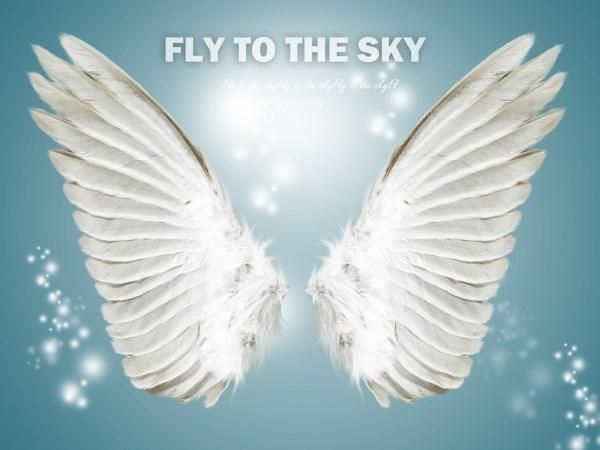 Angel Wings source PSD free