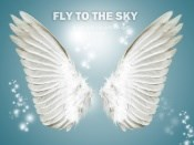 Angel Wings source PSD free
