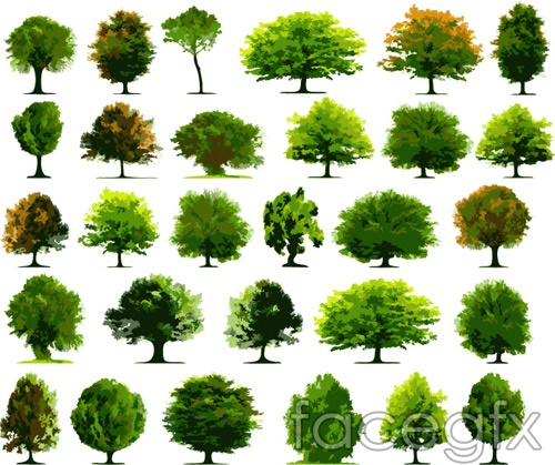 Variety of vector plant trees Green