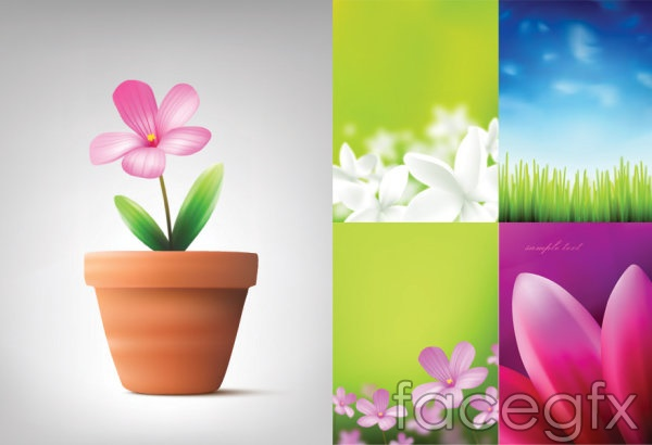 Plants and flowers of the sky blue petals vector