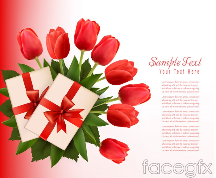 Red Tulip flower cards vector