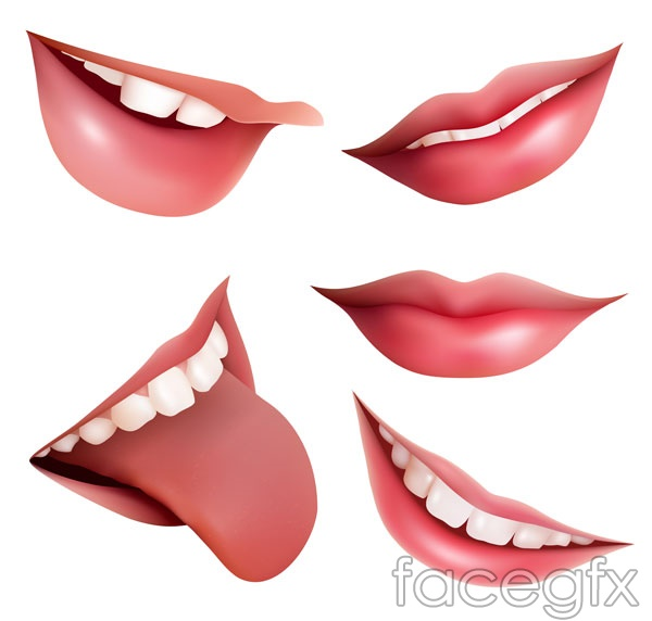 The mouth vector