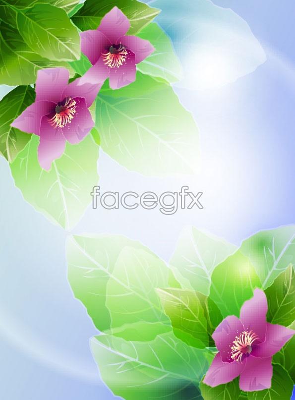 Beautiful flower vector 3