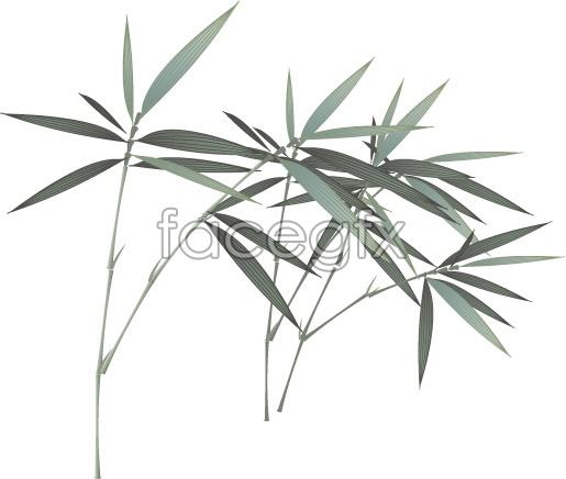 Vector-bamboo