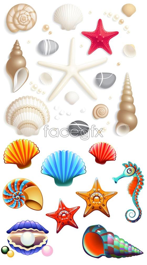 Cute cartoon seashells vector