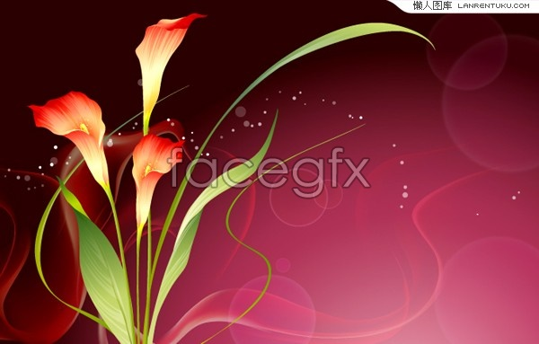 Fantasy Carnation background vector