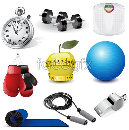 Fitness exercise equipment vector