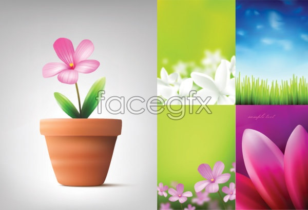 Flowers and plants vector