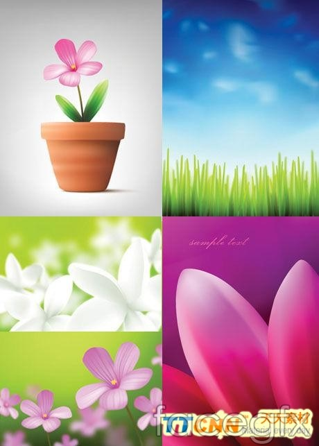 Beautiful flowers and plants design vector