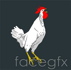France Rooster vector