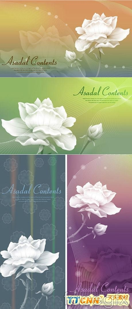 White roses and fantasy backgrounds vector
