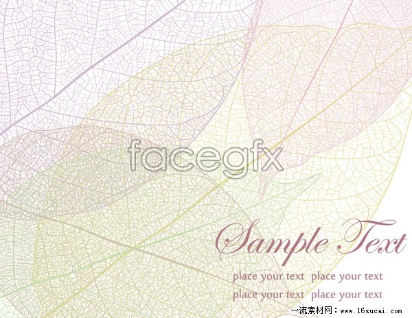 Exquisite vein background vector