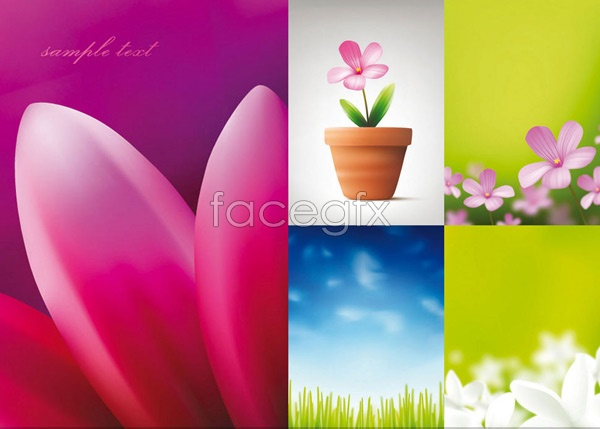Flowers and blue grass Vector