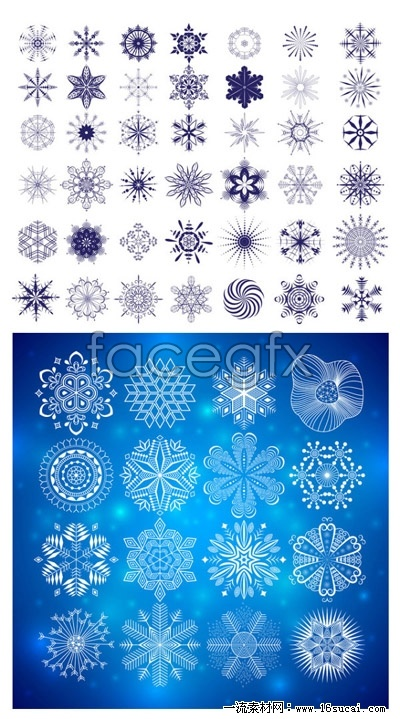 Beautiful pattern vector graphics