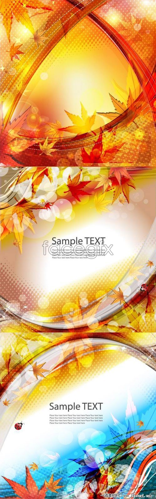 3 brilliant autumn leaves background vector