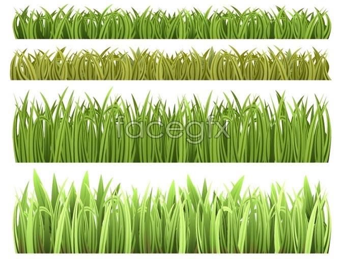 Vector beautiful grass