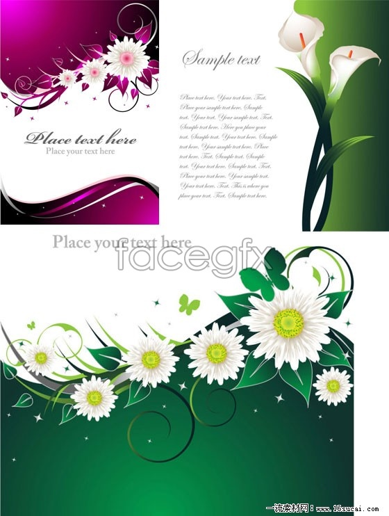 Design of three flower background vector